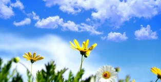 beautiful-summer-2012-a-beautiful-day-1920x1200-97102_beautiful-day